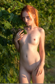 Redhead May In The Nature - 15