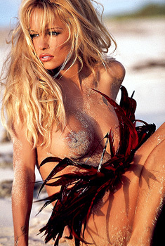 Pamela Anderson Trapped On A Beach In A Fishnet